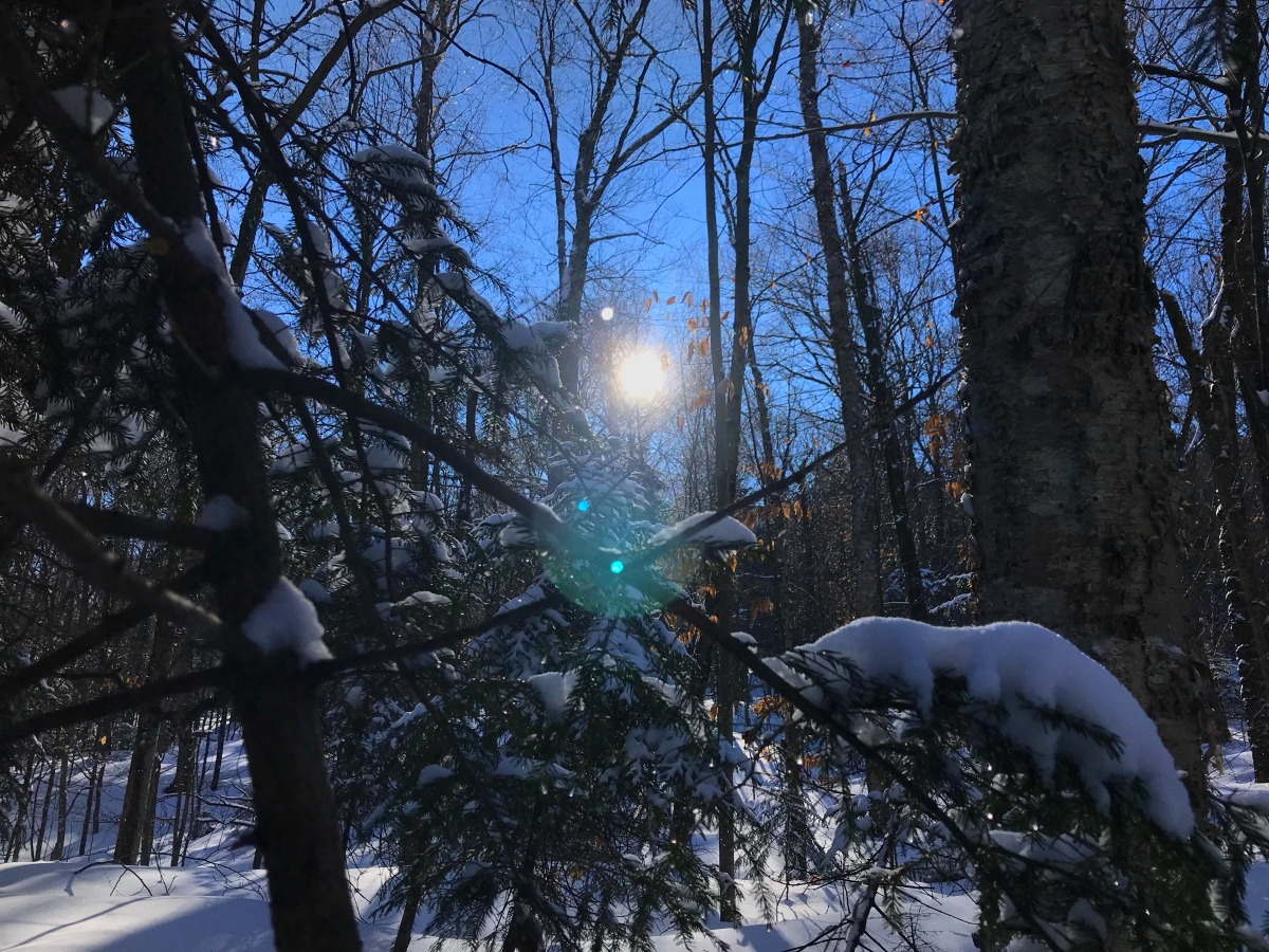 Winter Hiking: All You Need To Know